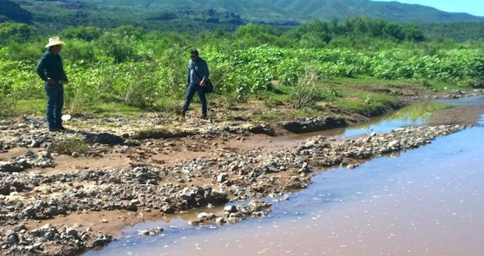 La Iniciativa Ciudadana de Ley General de Aguas es una de las opciones desde las que en Greenpeace creemos podemos comenzar a revertir situaciones como las que se viven en Jalisco. Foto: Cuartoscuro